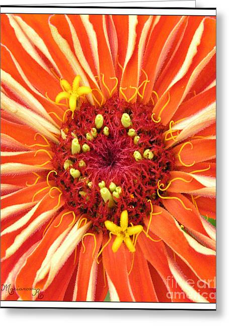Flowers Within A Flower Greeting Card by Mariarosa Rockefeller