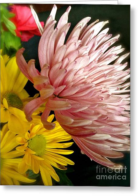 Flowers3 Greeting Card by Susan Townsend