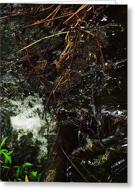 Flowing And Churning Of The Kaaterskill Greeting Card