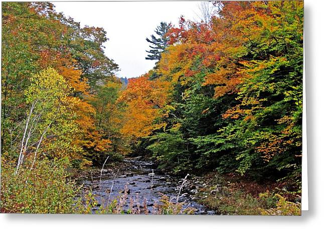 Flowing Into October Greeting Card