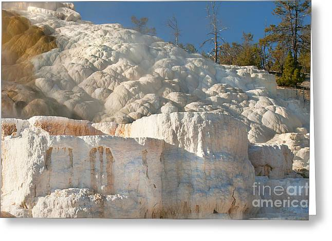 Flowing Minerals Greeting Card by Wanda Krack
