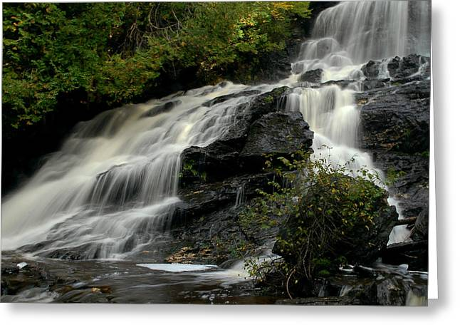 Flowing Peace Greeting Card by Tammy Collins