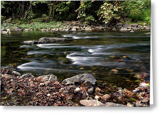 Flowing Senantion Greeting Card by David Lester