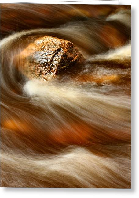 Flowing Stream Greeting Card by Acadia Photography