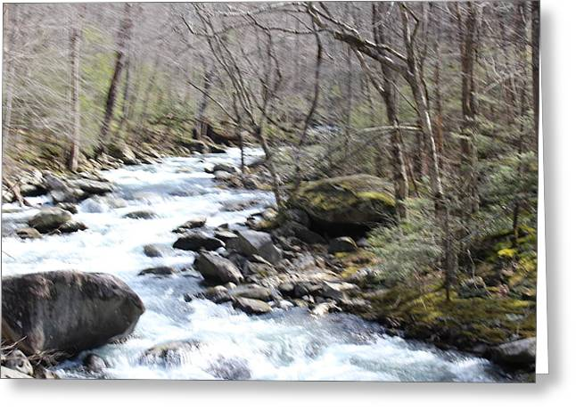 Flowing Through Greeting Card by Regina McLeroy