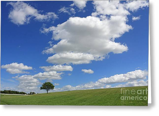 Fluffy Clouds Over Epsom Downs Surrey Greeting Card