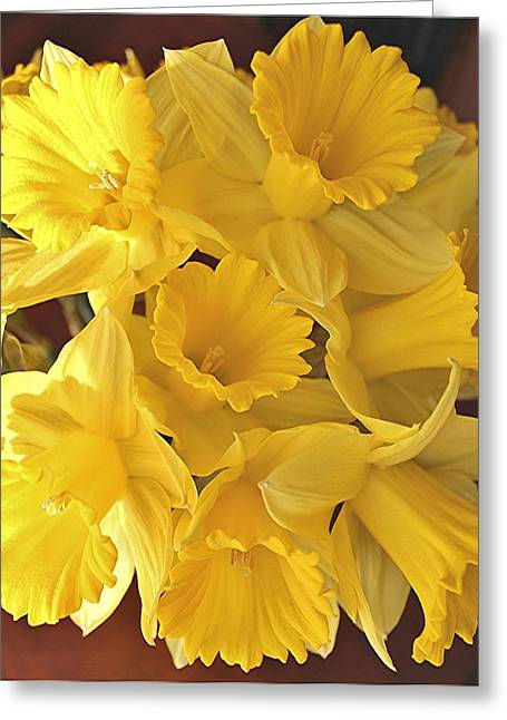 Greeting Card featuring the photograph Flurry Of Daffodils by Diane Alexander
