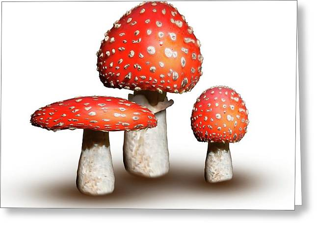 Fly Agaric Mushrooms Greeting Card by Mikkel Juul Jensen