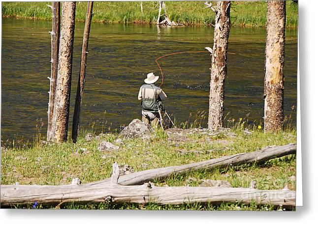 Greeting Card featuring the photograph Fly Fishing by Mary Carol Story