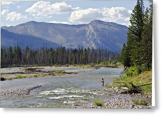 Fly Fishing On The South Fork Of The Flathead River Greeting Card by Merle Ann Loman
