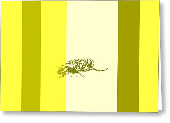 Fly In Popart  Greeting Card