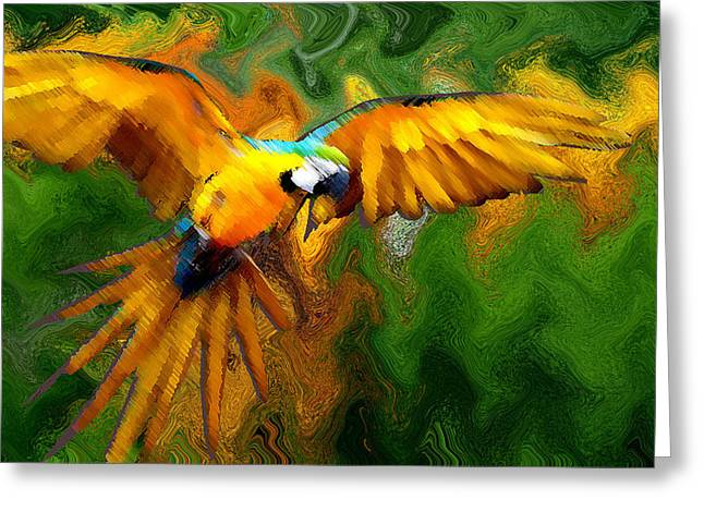 Flying 2 Greeting Card by Bruce Iorio