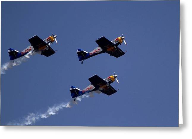 Flying Bulls Greeting Card by Ramabhadran Thirupattur