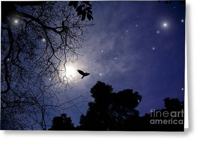 Flying By The Moon Greeting Card