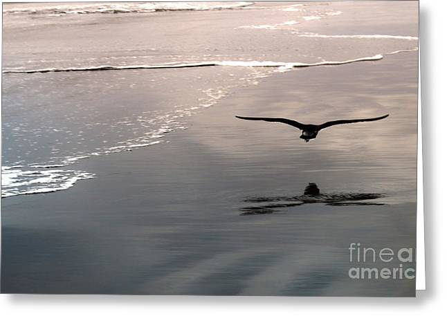 Flying Close To The Ground Greeting Card by Gregory Dyer