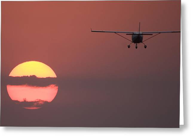 Flying Into The Sun Greeting Card by Paul Job