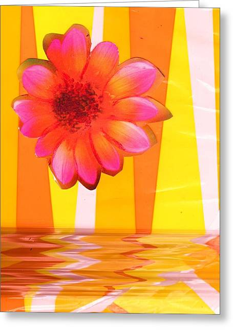 Flying Magic Bouncing Flower Greeting Card by Anne-Elizabeth Whiteway