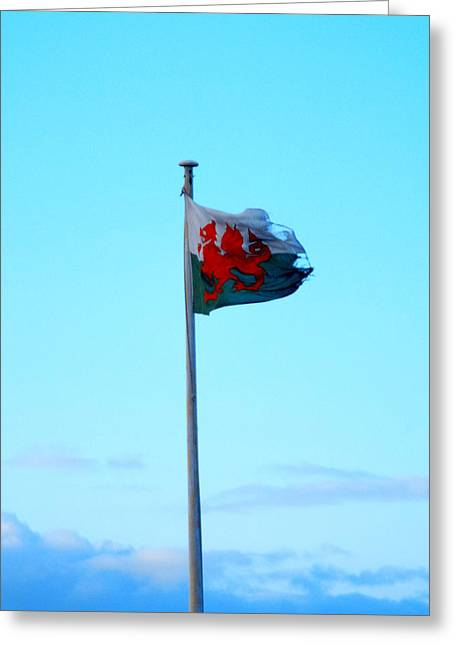 Flying The Flag Greeting Card