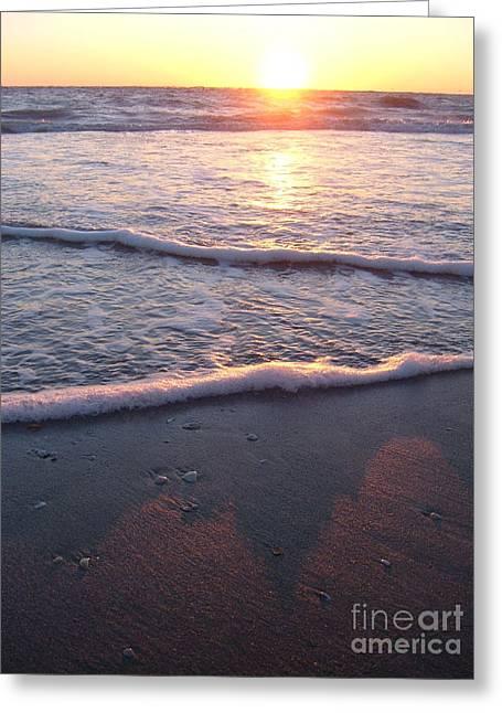 Foamy Shore Greeting Card by Sean Hughes