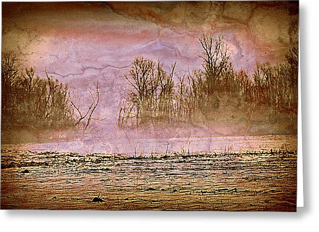 Fog Abstract 3 Greeting Card by Marty Koch