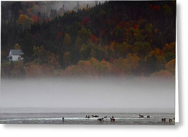 Fog Along The Cabot Trail During Autumn Greeting Card