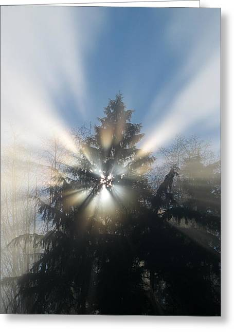 Fog And Light Rays Greeting Card by Brian Chase