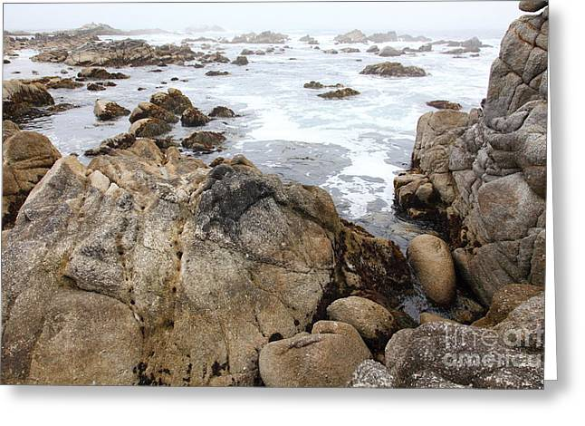 Fog And Rock Formations At Asilomar State Beach In Pacific Grove Near Monterey California 5d25121 Greeting Card
