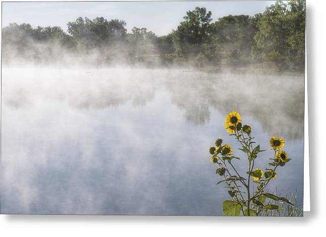 Greeting Card featuring the photograph Fog And Sunflowers by Rob Graham