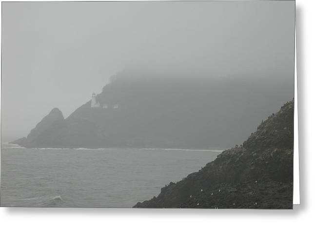 Fog At The Coast Greeting Card by Yvette Pichette