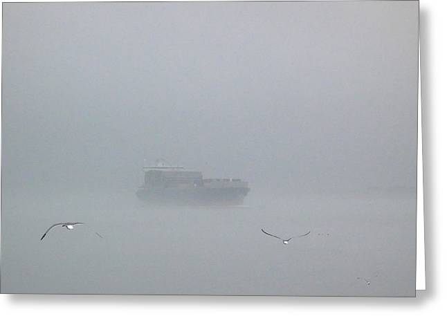 Fog Bound Greeting Card