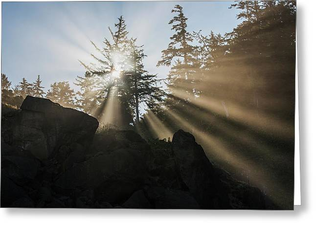 Fog Diffuses The Sunlight  Cannon Greeting Card by Robert L. Potts