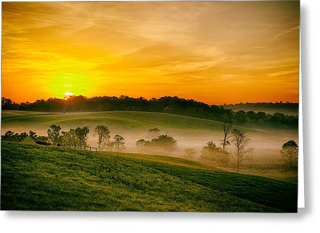 Fog Farms And Fields II Greeting Card by Dan Carmichael