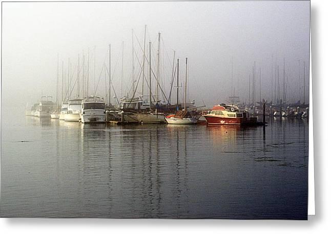 Fog Light In The Harbor Greeting Card