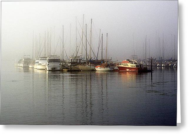 Fog Light In The Harbor Greeting Card