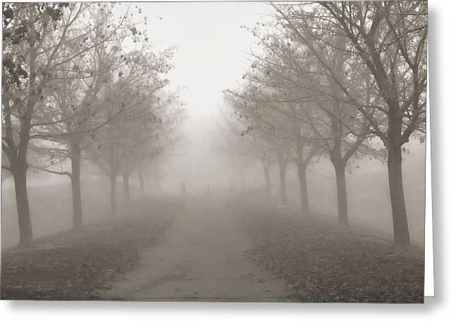 Fog Monochrome Greeting Card