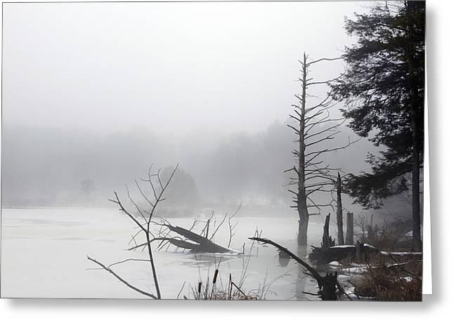 Fog On The Beaver Pond Greeting Card by David Simons