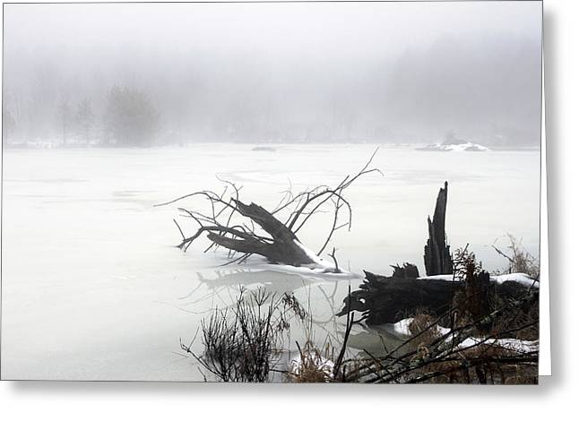 Fog On The Pond Greeting Card by David Simons