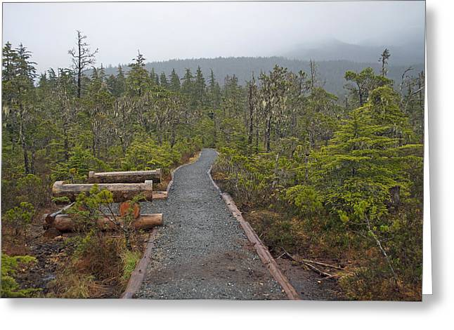Fog On The Trail Greeting Card