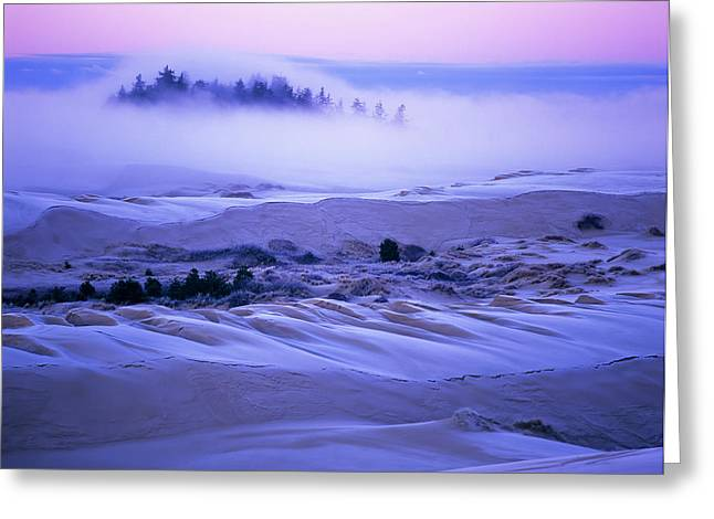 Fog Over The Sand Dunes At Dawn Greeting Card by Robert L. Potts