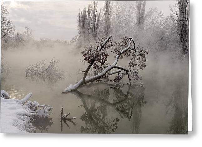 Fog Over The Water Greeting Card