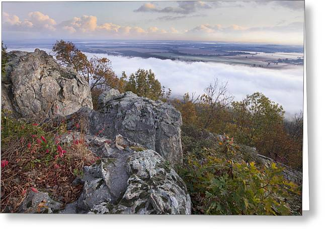 Fog Over Valley Petit Jean State Park Greeting Card by Tim Fitzharris