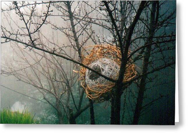Fog Sphere Greeting Card by Daniel P Cronin