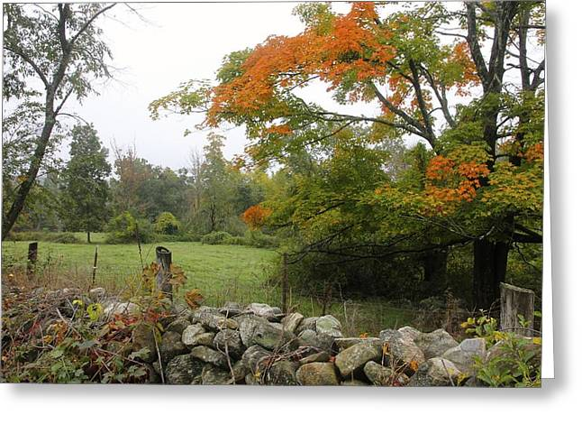 Foggy Autumn Greeting Card by Jim Gillen