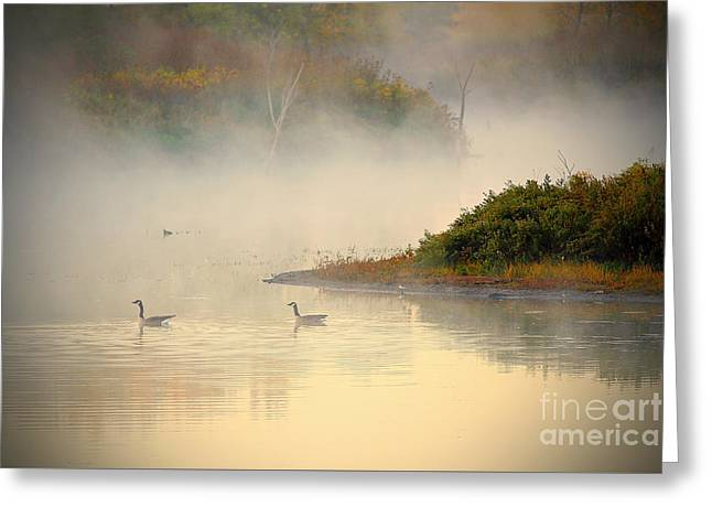 Foggy Autumn Swim Greeting Card