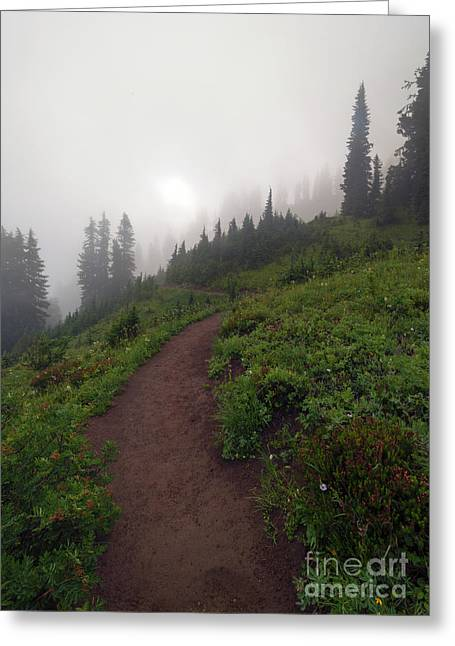 Foggy Crest Trail Greeting Card by Mike  Dawson