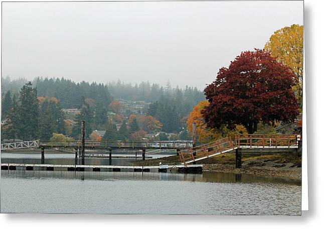 Greeting Card featuring the photograph Foggy Day In October by E Faithe Lester