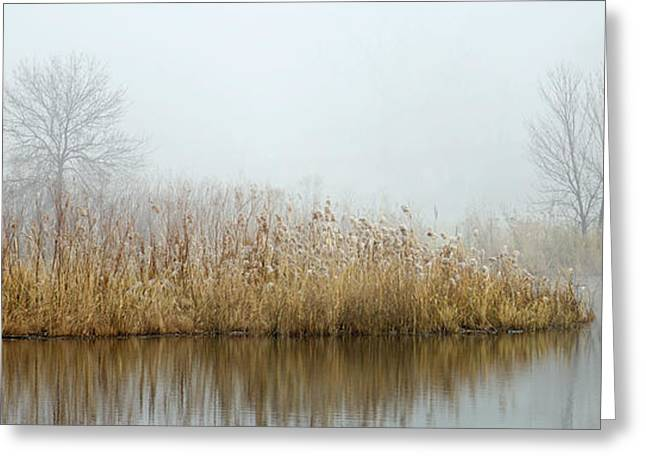 Foggy Duck Pond 1 Greeting Card by James Blackwell JR