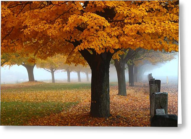 Greeting Card featuring the photograph Foggy Fall Morning by Lynn Hopwood