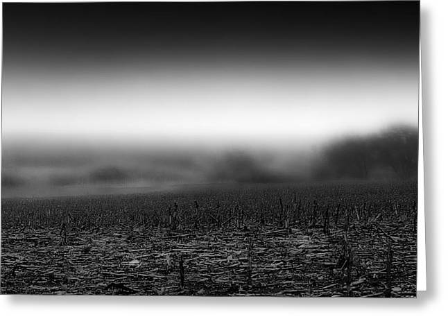 Foggy Field Greeting Card by Tom Gort