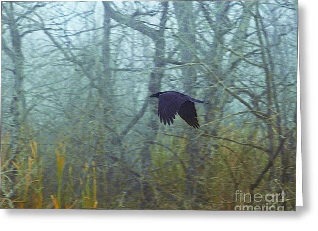 Foggy Flight Greeting Card by Judy Wood
